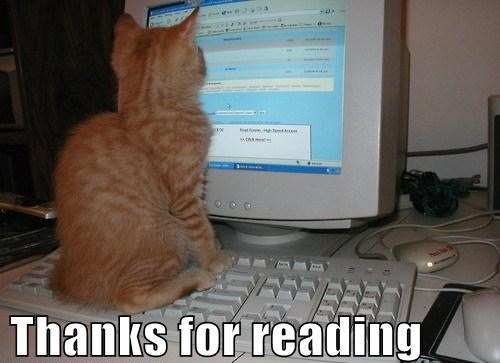 thanks_for_reading_cat_2