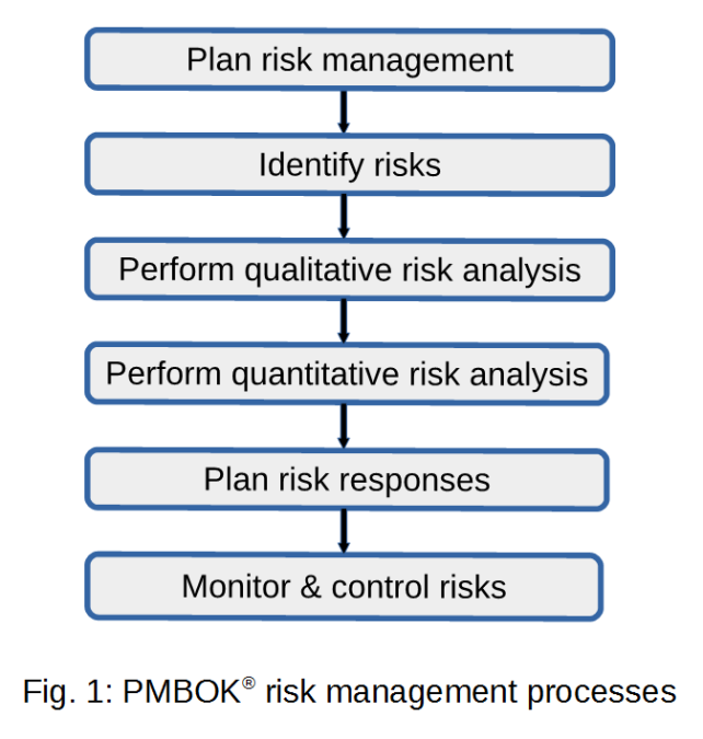 PMI risk processes